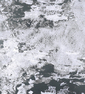 South Grey (прозрачный)